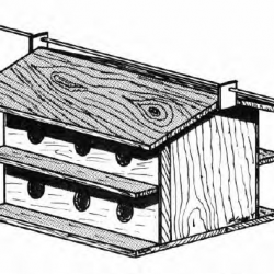 Purple Martin Birdhouse Plans