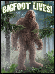 realistic bigfoot lives poster