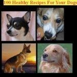 100 Healthy Dog Recipes
