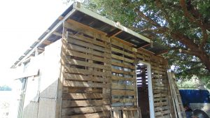 wood-pallet-outdoor-shed
